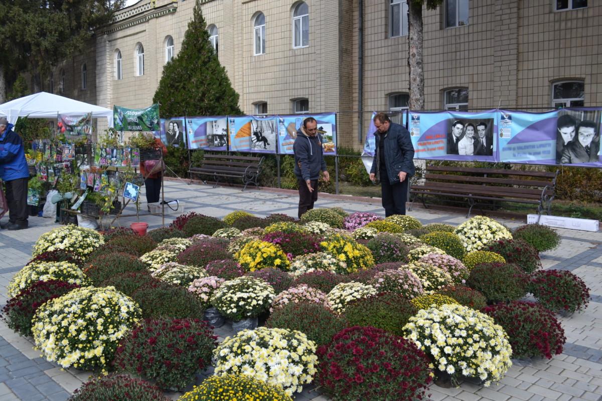 """""""Festivalul Florilor de Toamnă 2017"""", ediţia I-a, mun. Edineţ, 14-15 octombrie 2017"""